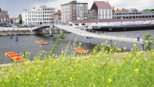Oude Dokken: van industriehaven tot nieuwe woonwijk en zoveel meer…
