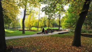 Wandeling rond groene stadsontwikkeling